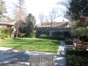The French Laundry's Courtyard