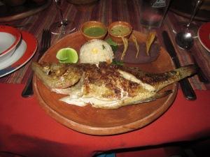 La Lancha's Fish