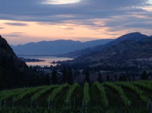 Okanagan Valley from See Ya Later Ranch. Stunning.