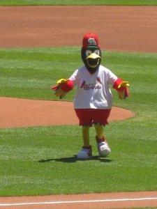 Fred Bird!